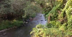 Ayung River Front Land At Ubud