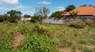2 Plots for Sale Located At Bumbak Umalas