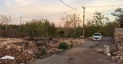 Land For Sale At Pecatu Area 900 Meter From The Beach