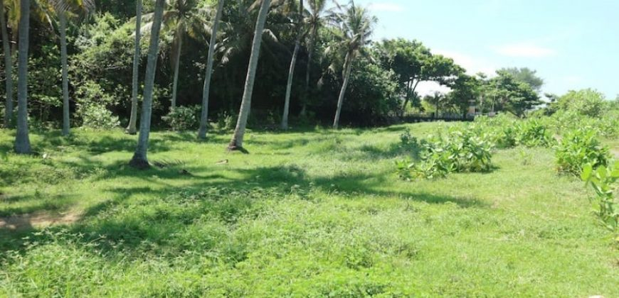 Beach Front Land At Klecung Tabanan