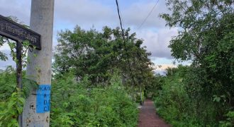 Land For Sale In Gunung Payung Kutuh