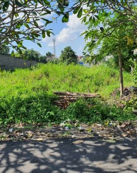 Land For Sale At Pererenan Canggu With Green Belt View