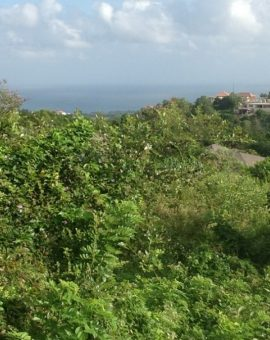 Sea View Land For Sale At Uluwatu Dreamland