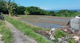Sea & Rice Field View Land In Klecung Tabanan