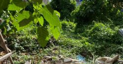 Rare Plot Size 160m2 For Sale At Seminyak