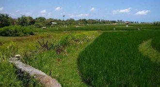 Land At Raya Canggu