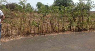Land Near Udayana University Jimbaran