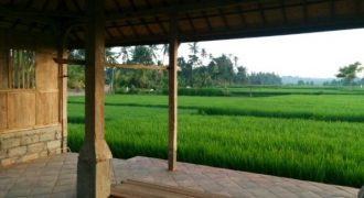 Land For Sale At Ubud Area