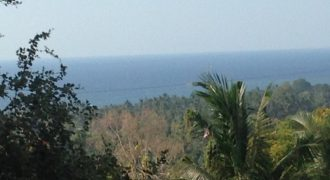 Ocean View Land Near Lovina Buleleng For sale