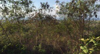 Unblocked Ocean View Land At Labuan Sait Pecatu