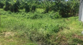 Land Size 125m2 For Sale Located At Betaka Dalung