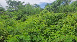 Land For Sale In kampial Nusa Dua