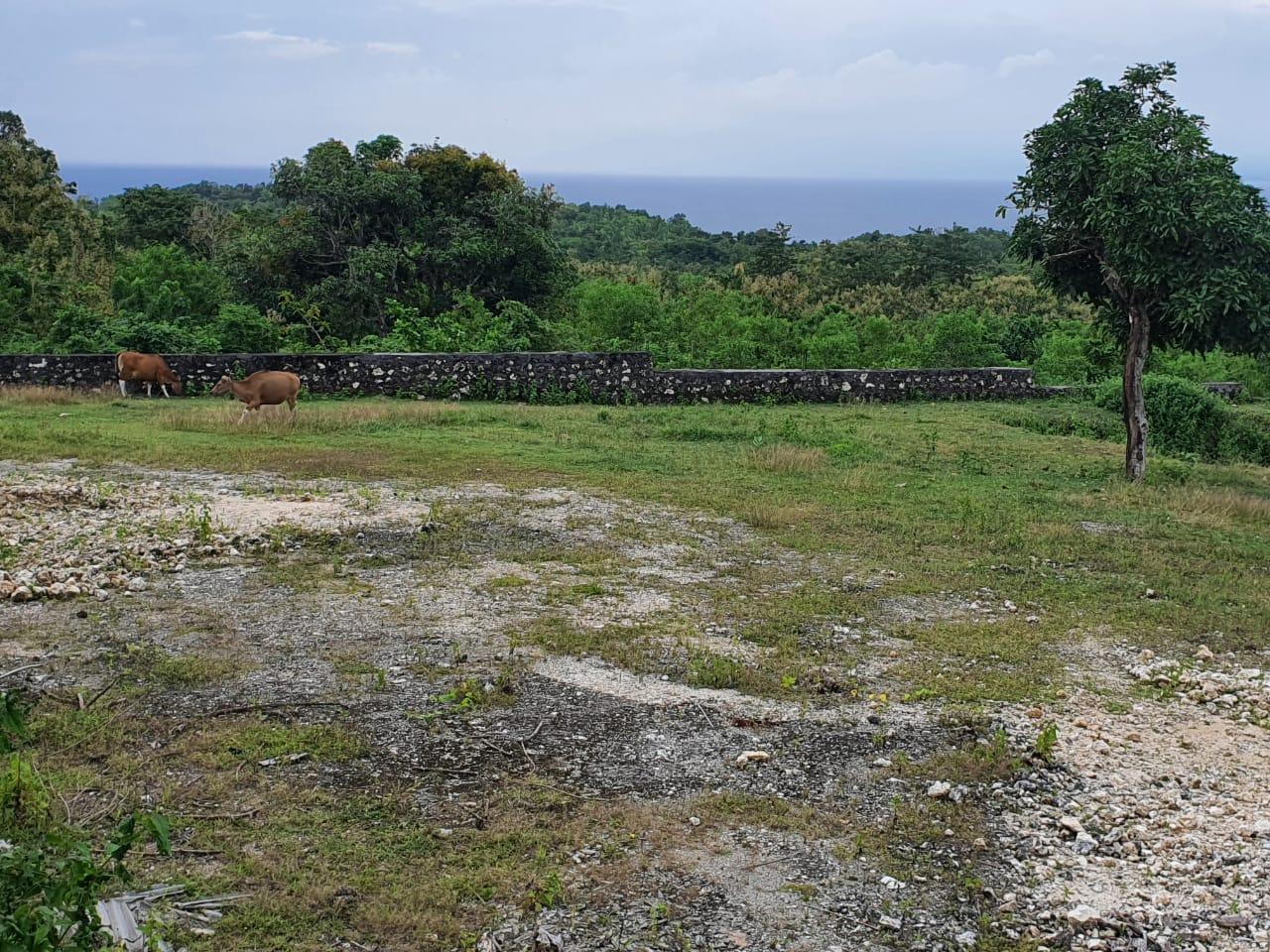 Sea View Land In Pecatu For Sale