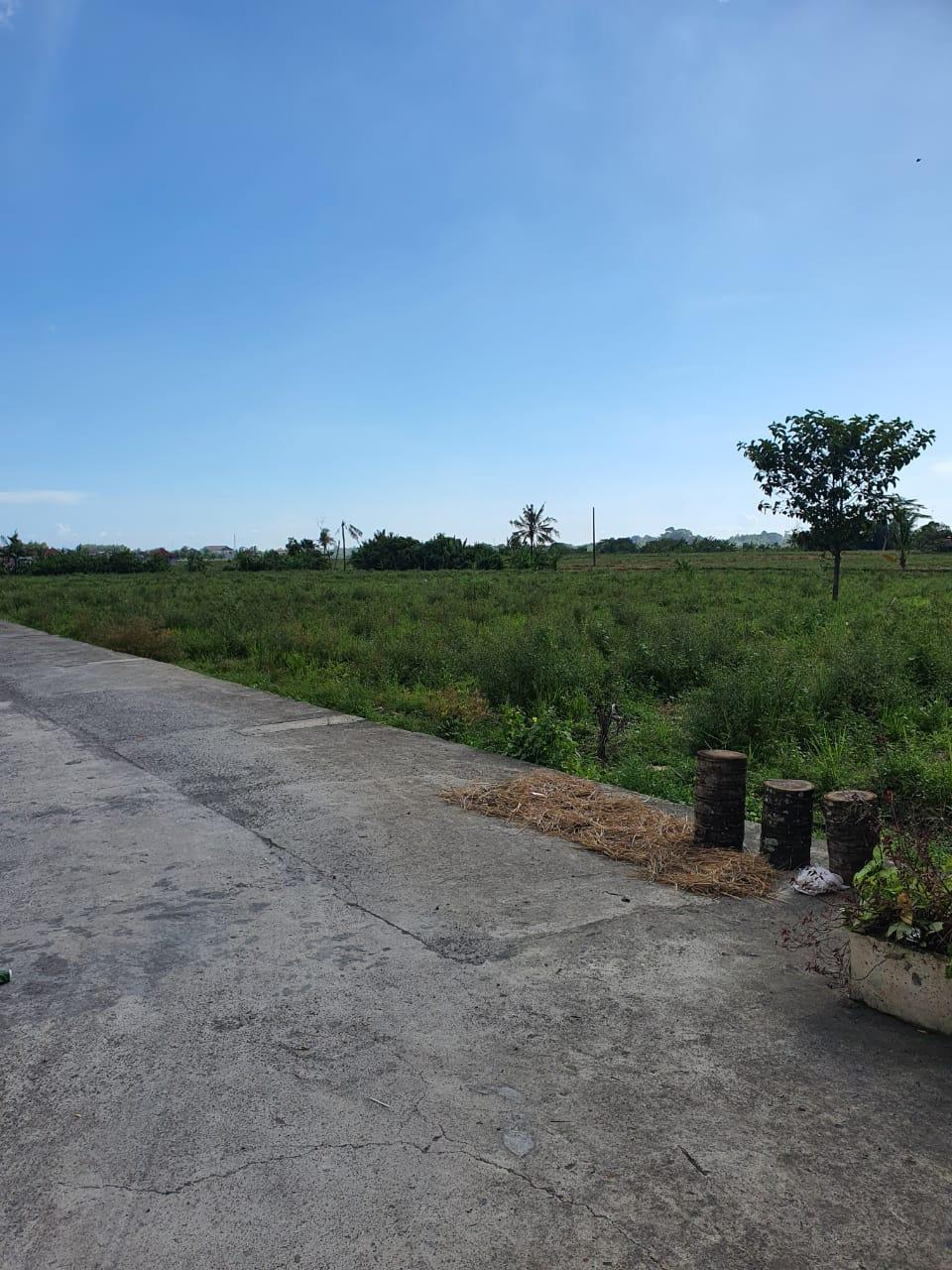Land With Low Price In Kediri Tabanan