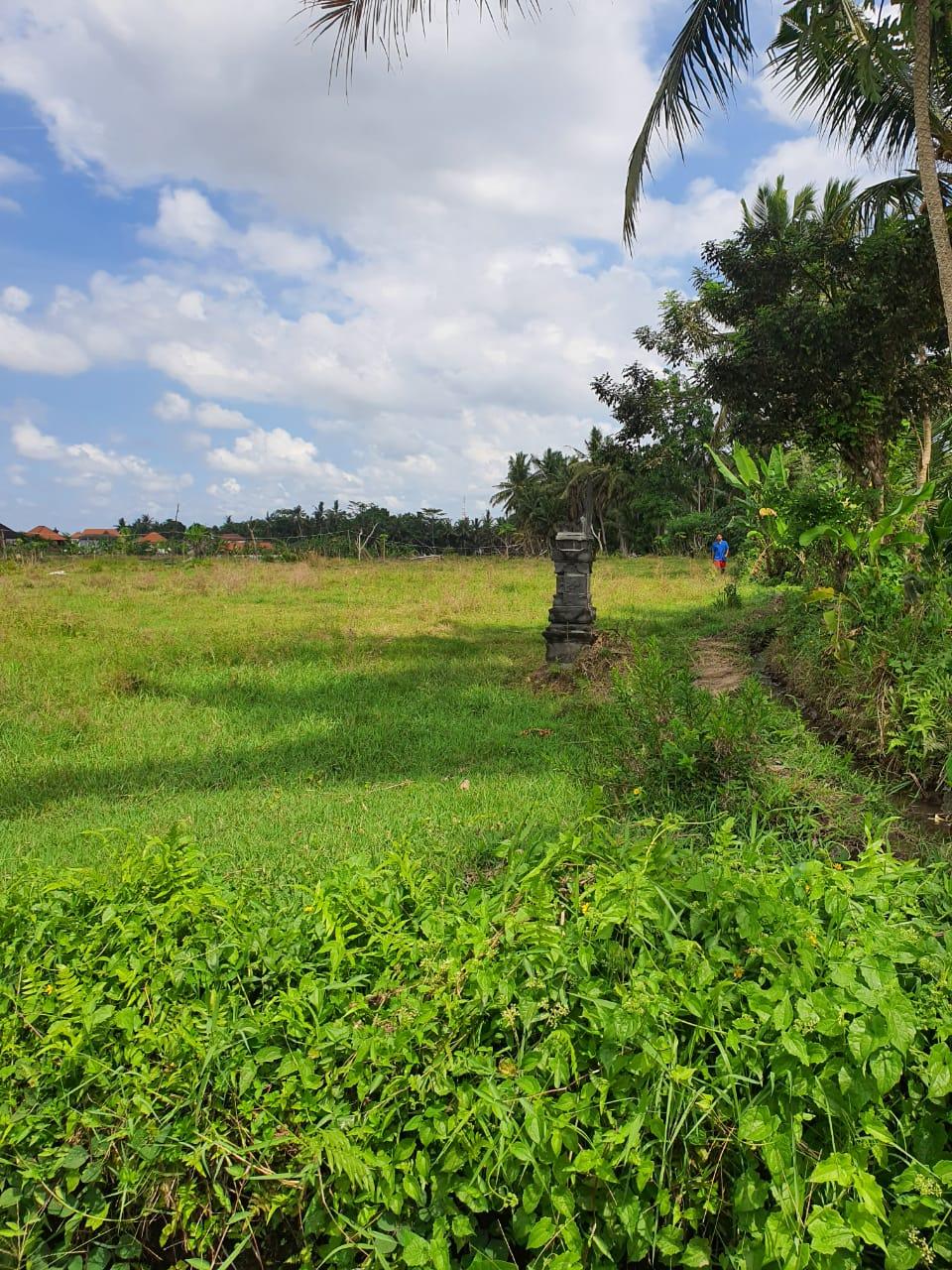 Good Price !Price Under Market ! Land in Central Ubud